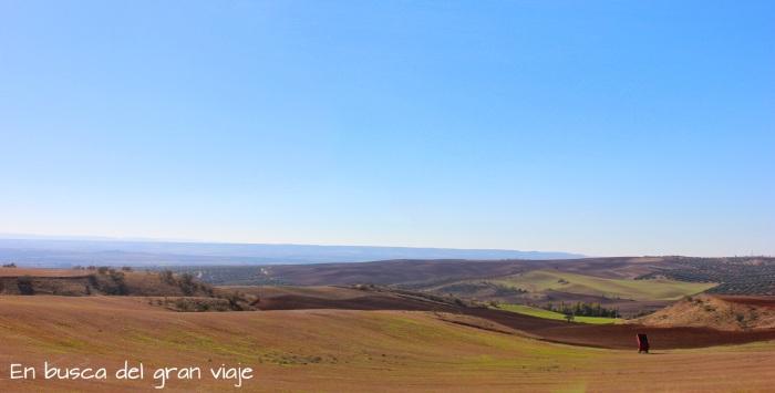 Vistas de los campos de siembra típicos de Castilla