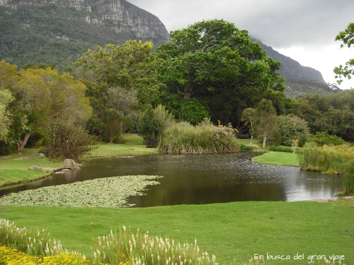 Una de las lagunas más bonitas del jardín botánico, rodeada por mucho cesp