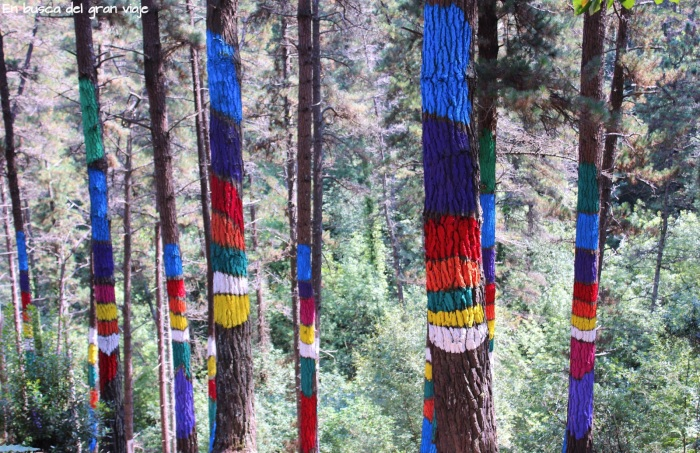 Árboles pintados de arcoiris en el Bosque pintado de