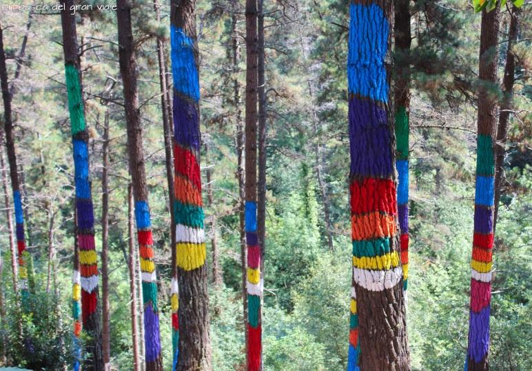 El arcoiris pintado en los árboles del bosque pintado de Oma