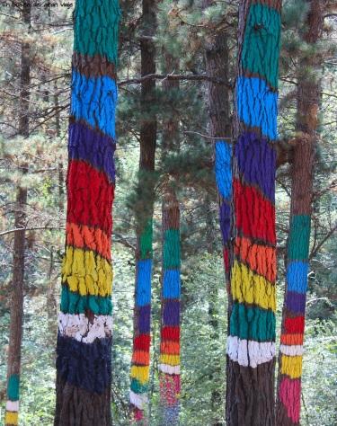 Los árboles de colores del bosque pintado de Oma