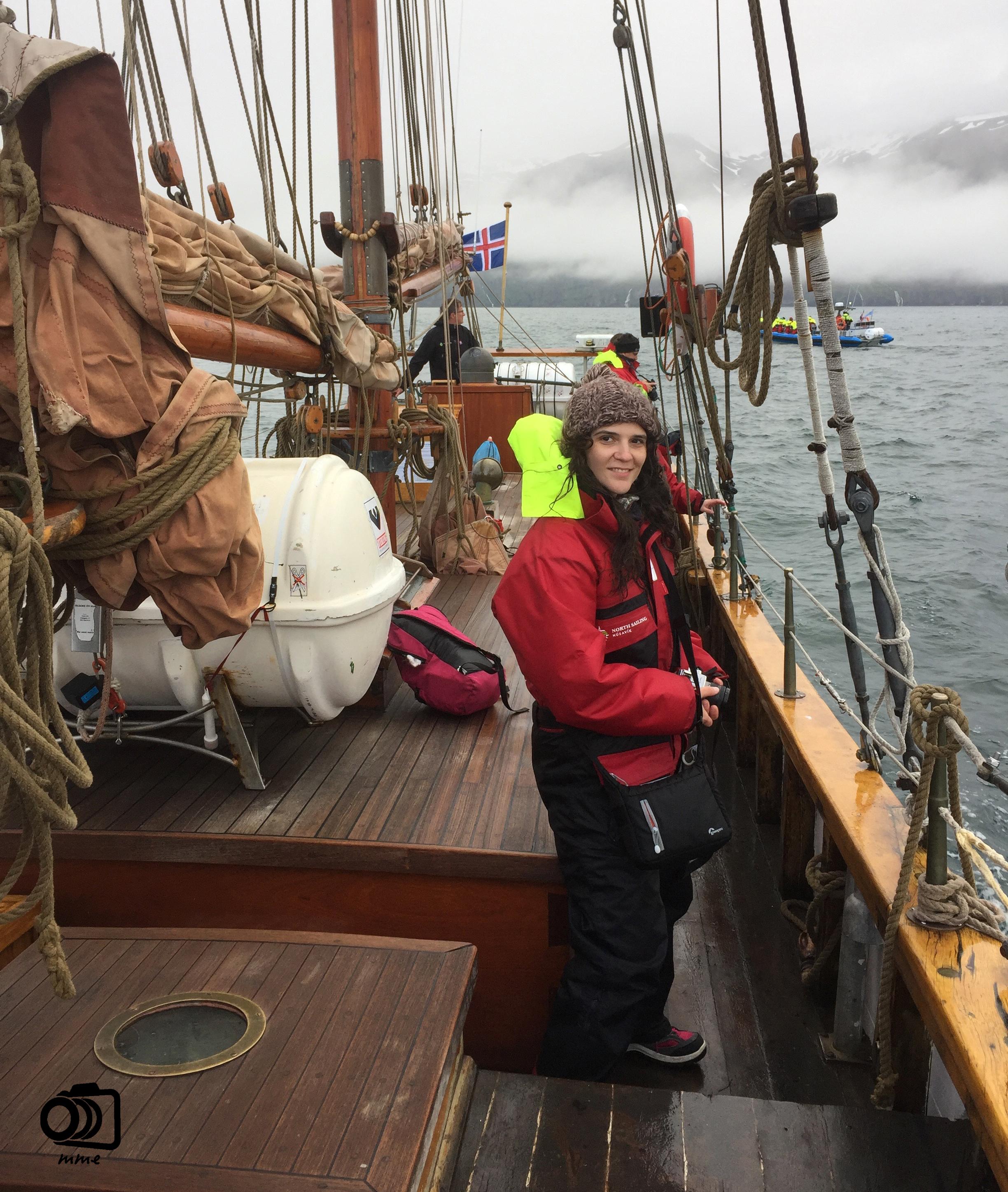 islandia-crucero