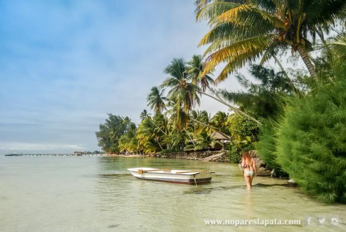 Moorea - Polinesia Francesa