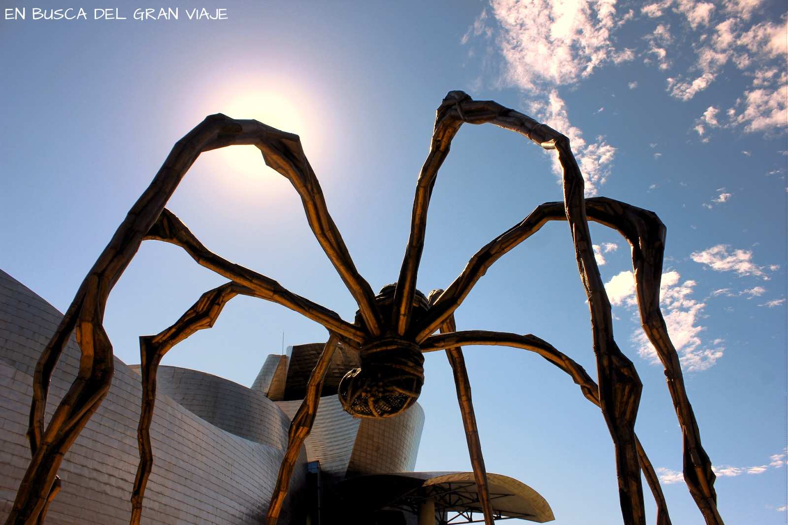 La araña Mamá