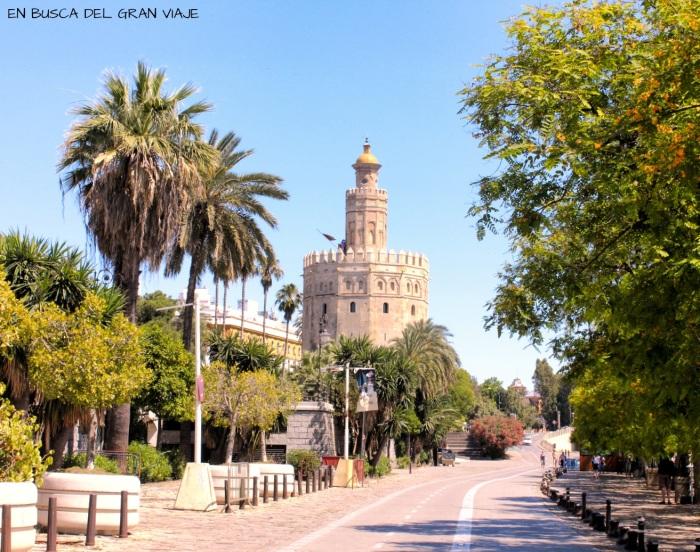 La Torre del Oro desde el carril bici de Sevilla