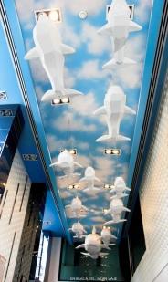 Ballenas en el techo de la recepción